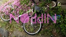 未来への手紙 / Dir TANGE KOUKI NOddINの画像